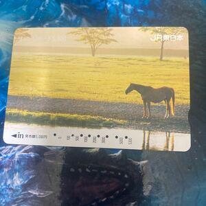 オレンジカードJR東日本5300円券使用済み馬