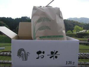 新米出来ました!! ☆ 農家直売 令和 3年度 熊本産 ひのひかり 美味しい 白米 10.0㎏ □☆