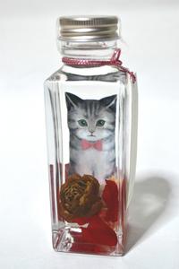 新品 Glass Herbarium bottle Cat グラスハーバリウム ボトルキャット プリザーブドフラワー ドライフラワー 植物標本 ギフト 未使用 即決