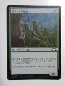 【MTG】★Foil 侵入する生物種 日本語1枚 M15 コモン