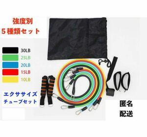 フィットネスチューブ 強度別5種類チューブ 11点セット 携帯便利 トレーニング