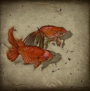 生田宏司「金魚」銅版画 カラーメゾチント 額装 魚 きんぎょ