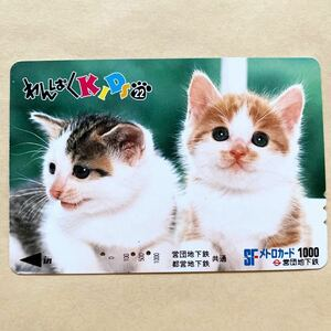 【使用済】 メトロカード 営団地下鉄 東京メトロ わんぱくKIDS 猫