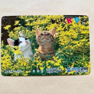 【使用済1穴】 メトロカード 営団地下鉄 東京メトロ わんぱくKIDS 猫