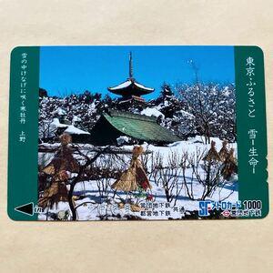 【使用済】 メトロカード 営団地下鉄 東京メトロ 雪の中けなげに咲く寒牡丹 上野