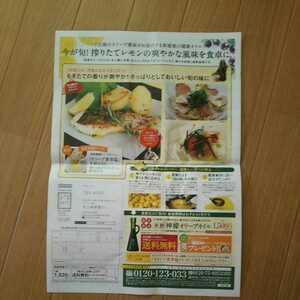 井上誠耕園 新鮮檸檬オリーブオイル 注文用紙付き広告紙 差出有効期限:令和4年4月6日迄