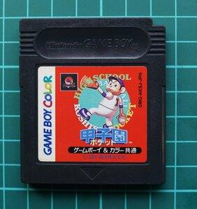 ゲームボーイ カラーカートリッジ : 甲子園ポケット DMG-AKSJ