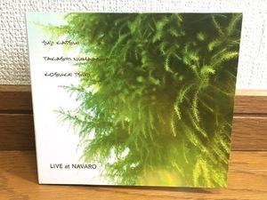 勝井祐二 + 沼澤尚 + 辻コースケ / LIVE at NAVARO 即興音楽 セッションアルバム 傑作 益子樹 / ROVO / Goma & The Jungle Rhythm Section