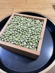 新大豆 令和2年産 山形県産 秘伝豆 青大豆 大粒 20キロ 青大豆 国産大豆 大豆
