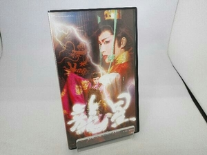 VHS 宝塚歌劇 星組シアタードラマシティ公演 龍星
