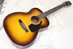 新品 Morris(モーリス) / F-020 TS アコースティックギター 初心者におすすめ ※全国送料無料(北海道・沖縄・離島は除きます。)
