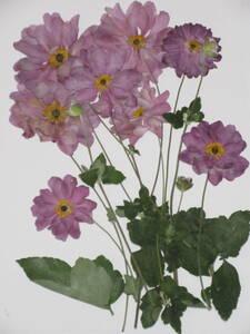 засушенный цветок материалы 3691 осень Akira .(. -слойный )