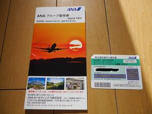 送料込み 最新版◆全日空 ANA 株主優待券 2021年11月30日迄