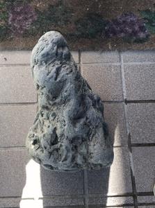八海石 ADA アクアリウム 飾り石 水石 鑑賞石 盆石
