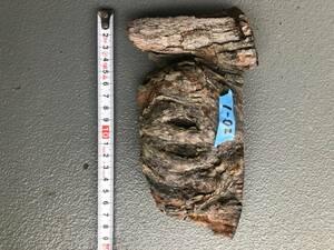 値下げ ぶどう木 ラン ビカクシダ エアプランツ 着生 DIY テラリウム アクアリウム 天然素材 爬虫類02