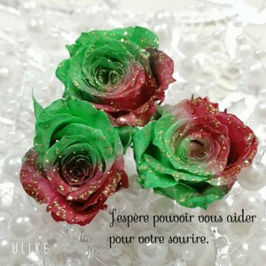 加工花材*ローズ プリザーブドフラワー 花材