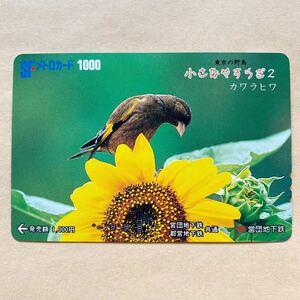 【使用済】 メトロカード 営団地下鉄 東京メトロ 東京の野鳥 小さなやすらぎ カワラヒワ