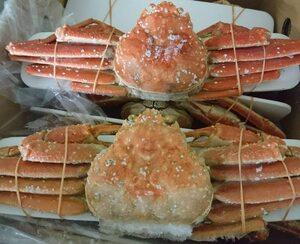 北海道(オホーツク) ボイルズワイガニ 姿 4kgセット ( 8~9尾 ) カニ かに 蟹 味噌 ずわい 国産