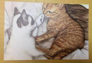 オリジナル 手描き イラスト ポストカード 猫 見つめ合う猫ちゃん達 水彩画 複製 【あおきしずか】手描きイラスト