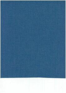 911702《生地の切売》無地 ブルー 青色 シャンブレー タイプライター生地 インディゴ染 シャツ向け 綿100% 国産 先染め【50cm単位】