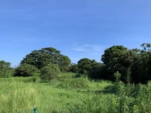 солнце свет departure электро- выработка электроэнергии из энергии ветра антенна земельный участок Corona избежание .. дом загородный дом гора . кемпинг набережная близко .!