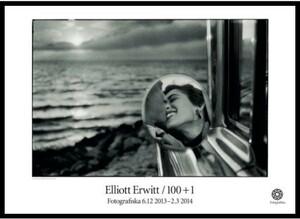 スウェーデン限定!アート写真家『エリオット・アーウィット』ポスター!現代美術芸術フォトd