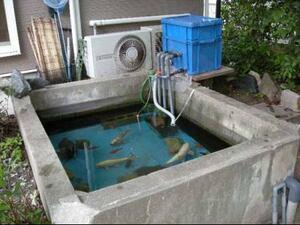大型水槽 池用 万能フィルター 1トン用 白点キャッチャーLタイプセット 濾過ウール モーター付き 4