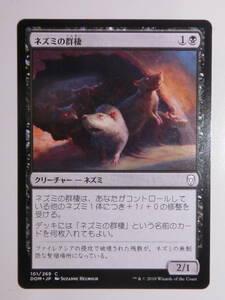 【MTG】ネズミの群棲 日本語1枚 ドミナリア DOM コモン