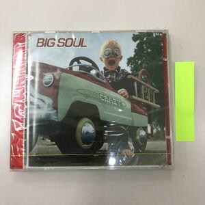 CD 輸入盤未開封【洋楽】長期保存品 BIG SOUL