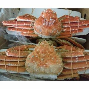 北海道(オホーツク) ボイルズワイガニ 姿 4kgセット ( 8尾 ) カニ かに 蟹 味噌 ずわい 国産