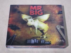 「WHAT IF.../MR.BIG」国内盤CD+DVD付き限定盤