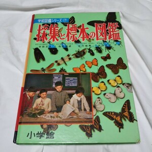 【昭和レトロ】採集と標本の図鑑