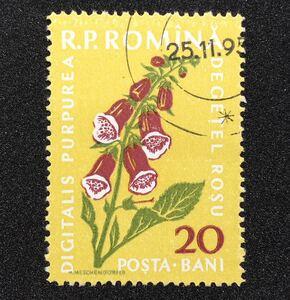 ◆ 古い 切手 海外 外国 ルーマニア ⑤⑦ アンティーク 骨董 ビンテージ 当時物 古物 戦前 戦後 昭和 年代物 歴史 資料 世界 花 植物 消印