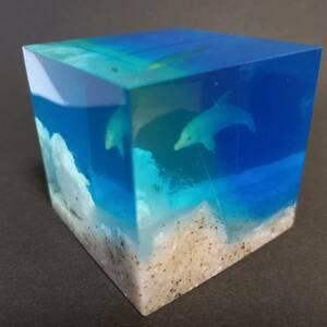 ■ перехват подводной перспективы моря / дельфинов украшение / вес бумаги / тв