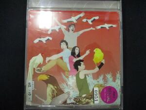 346 レンタル版CD 教育/東京事変 0951