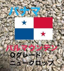 パナマ バルマウンテン!コーヒー生豆200g焙煎してません!簡単なハンドピック済みです!
