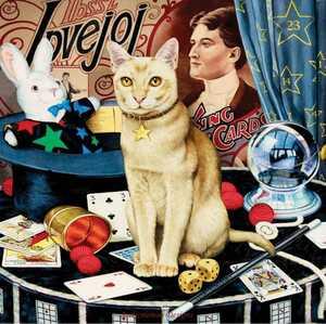 クロスステッチキット マジシャンキャット 33×33 14CT 猫 ネコ ねこ 刺繍