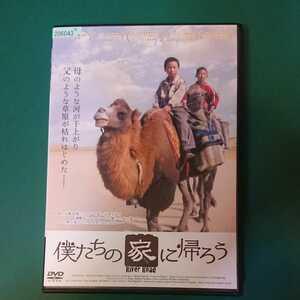 「僕たちの家に帰ろう」リー・ルイジュン監督。中国映画。テュルク語・北京語。日本語字幕。ユグル族。シルクロード。らくだ。