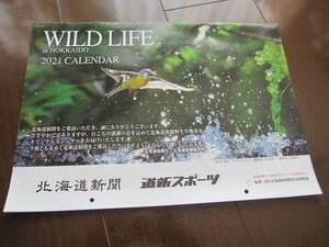 新品・非売品 北海道新聞 壁掛け カレンダー 2021年 WILD LIFE in HOKKAIDO 動物 北の大地 道新