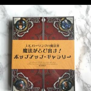 新品 未開封 ハリポタ ファンタビ 世界が飛び出す!仕掛け絵本 しかけ 絵本 本 児童書 送料無料 ハリーポッター J.K.ローリング