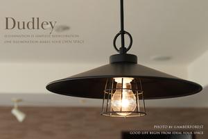1灯ライト■Dudley■ [p1] GLF-3532 後藤照明 〆付けブラックガードアルミP1LBB・CP型BK 天井照明 ペンダントランプ 1灯タイプ