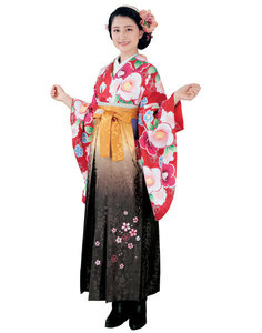 二尺袖 着物 袴フルセット H・L アッシュ・エル 着物丈は着付けし易いショート丈 卒業式 新品(株)安田屋 NO28636