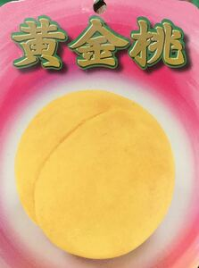 ゴールドピーチ(黄金桃)苗木