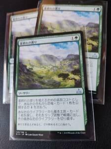★☆MTG 【JP】《雷群れの渡り/Thunderherd Migration》[RIX] 緑U ★☆在庫枚数3枚 全ての商品同梱可能