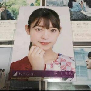 乃木坂46 生写真 阪口珠美