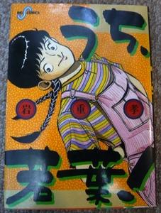 うち、若葉! 岩重孝作品 小学館ビッグコミックス(昭和61年2月1日 初版第1刷発行)