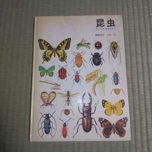 絵本 昆虫 ちいさななかまたち かがくのほん 福音館書店 第36刷('90)