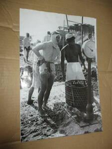 チラシ Flyer 日本民族写真大系 日本図書センター 海女