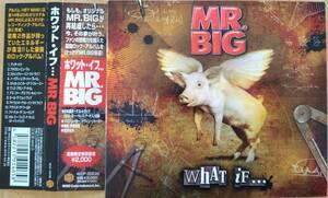☆即決!☆帯付良品!MR.BIG:ホワット・イフ・・・ 紙ジャケット CD