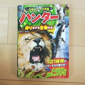 ハンター 狩りをする生物たち 生物のふしぎ大図鑑/小宮輝之 (その他)